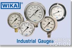 "Pressure gauge with G1/4"" bottom-connection, Silicon filling, range to 250 bar max 0"